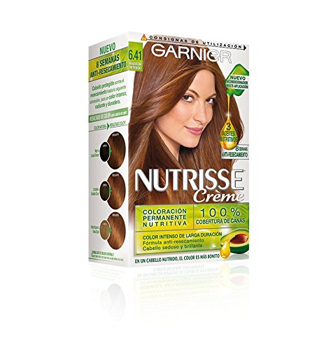 Garnier Coloration noisette nº6.41 brun intense